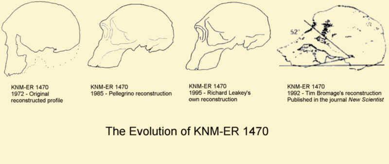 Lady fucking human evolution dating techniques priyanka gandhi