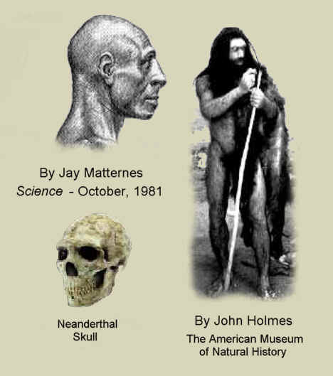 Early Man Evolution The Evolution of Early Man